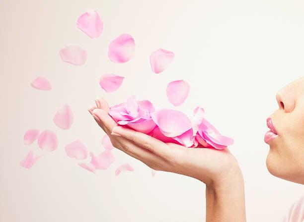 Où trouver de faux pétales de rose ?