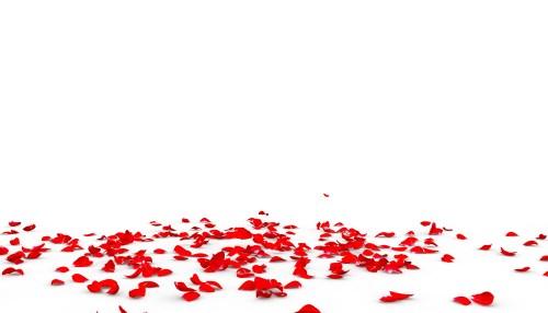 Les pétales de rose, la déco traditionnelle pour votre table de saint valentin