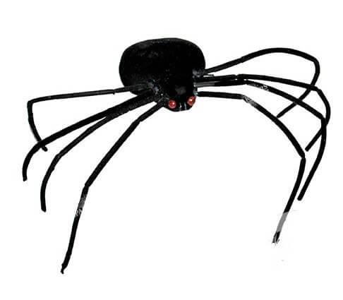 Araignée pattes fines 35cm