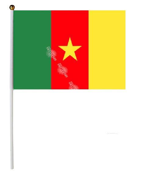 Drapeau Cameroun 30x45cm avec baguette