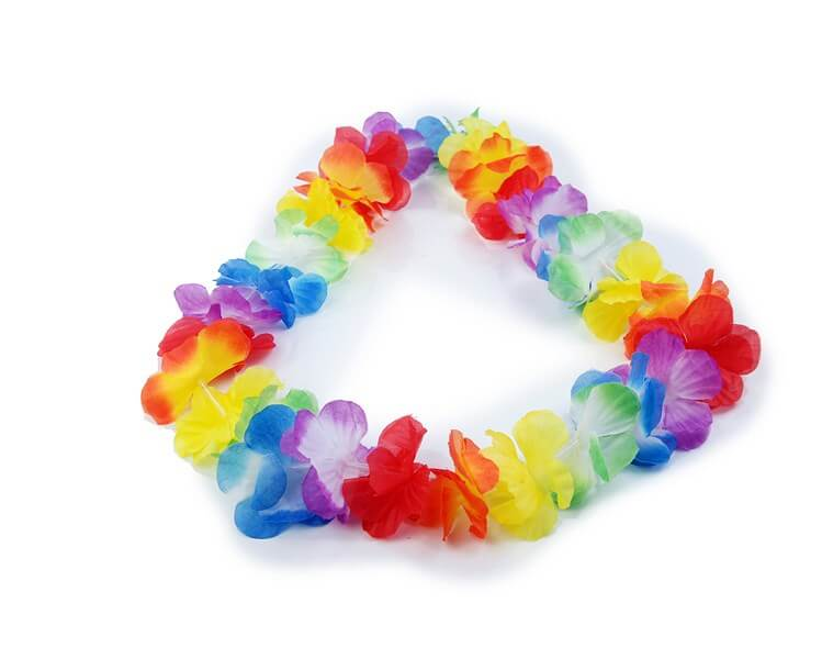 Collier Hawaïen à Fleurs Multicolore